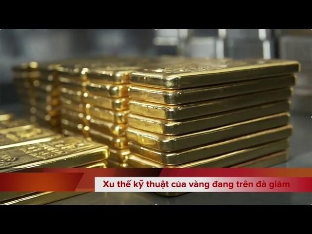 Bản tin video sáng 27/11/2020: Giá vàng trong nước cũng nghỉ ngơi Lễ Tạ ơn