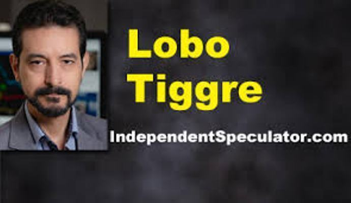 Lobo Tiggre: Tôi đang chờ mức đỉnh mới của vàng và bạc. Bởi vì… (Phần 1)