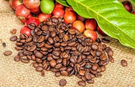 Giá cà phê trái chiều trên thị trường thế giới, Robusta có xu hướng đi lên mạnh.